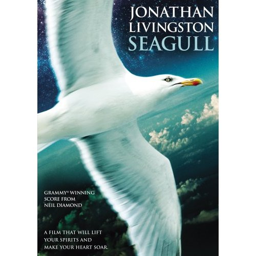 The Sea Gull movie